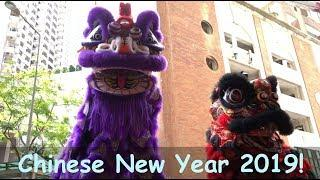 CHINESE NEW YEAR 2019 with LION DANCING and FIREWORKS!!