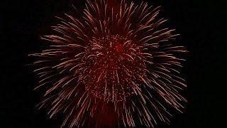 ADELFIA ★ Festa Patronale San Trifone / PELLICANI FIREWORKS ★ [HD]