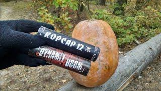 Взрываем петарды в тыкве на Хеллоуин | Самая мощная петарда Корсар 12 и 16 Динамит Бум 10000