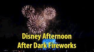 Disney Afternoon After Dark Fireworks - Disneyland After Dark 90s Nite