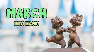 MARCH into Magic!    Rides, Fireworks, and MORE!