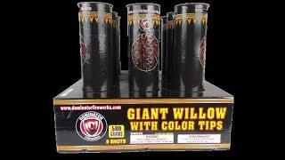 Giant Willow With Color Tips By Dominator Fireworks