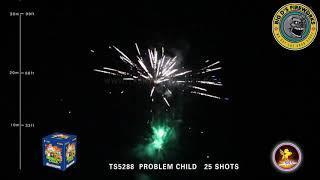 "Problem Child! 200 Gram Cake by ""T Sky Fireworks"""
