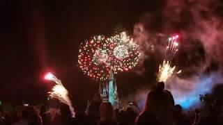 Happily Ever After Fireworks Disney World Magic Kingdom Florida 2020/ Full video