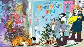 БЕНГАЛЬСКИЕ ОГНИ: Николай Носов делаем уроки, аудио книга
