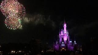 Final Fireworks Tokyo Disneyland