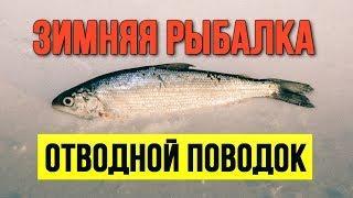 Как правильно и надёжно привязать отводной поводок Зимняя рыбалка Рипус