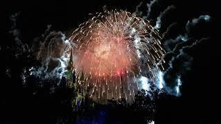 Disneyland Fireworks-Orlando Florida