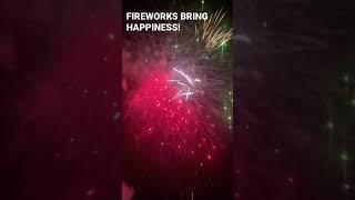 FIREWORKS BRING HAPPINESS | FIRST ELITE FIREWORKS #shorts