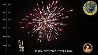 """Not For The Weak! 5 Inch Canister Shell by """"T Sky Fireworks"""""""