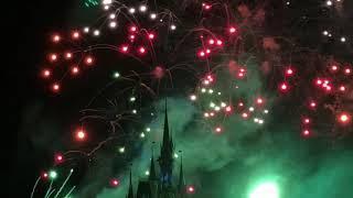 Disney World Fireworks display ORLANDO FLORIDA USA
