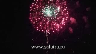 Фейерверк на новогодний корпоратив – заказать шоу в Самаре и Тольятти.