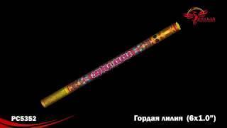 "Римские свечи РС5352 Гордая лилия (1,0"" х 6)"