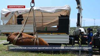 Под водой и на суше: севастопольские спасатели одновременно провели две пиротехнические операции