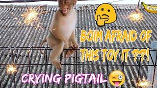 PIGTAIL FIREWORKS || MONKEY FIREWORKS || CRYING PIGTAIL || PIG TAILED BOIM || FIRECRACKERS PIGTAIL