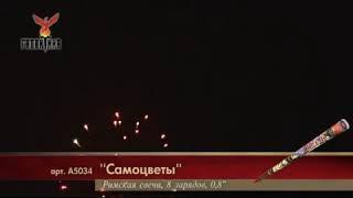 САМОЦВЕТЫ А5034 РИМСКАЯ СВЕЧА