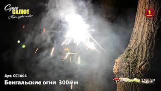 Бенгальские огни 300мм 4 шт СС1004