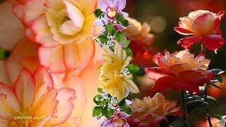 Чудесная музыка для души ✿ Красивые цветы и цветочное настроение