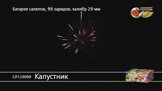 СЛ129099 Капустник Батарея салютов