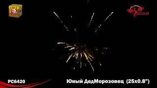 РС6420 Салют 'Юный ДедМорозовец' 0,8'х25 МОДУЛЬ 1 16 1