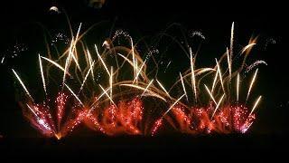 ADELFIA ★ Festa Patronale San Trifone / BRUSCELLA FIREWORKS ★ [HD]