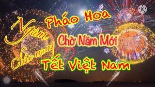 Fireworks | Feu d'artifice | Pháo hoa chờ Tết Việt Nam