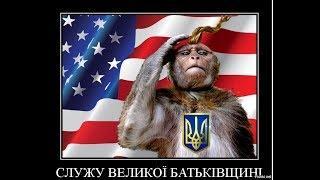 """Рубрика """"Украинский блогер"""" : Шататели.....(крамольное)"""