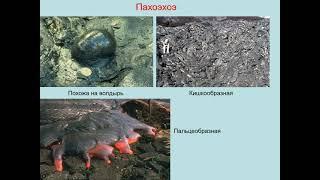 Романовская М. А. - Современное естествознание - Лекция 8