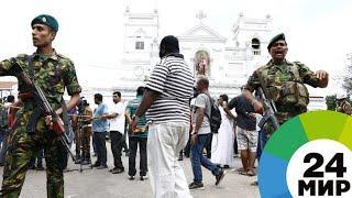 Папа римский осудил жестокие теракты на Шри-Ланке - МИР 24