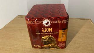 Lion : Pangu Fireworks : 25 Shots : Straatfilm