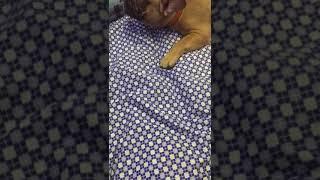 Собака съела бенгальские огни