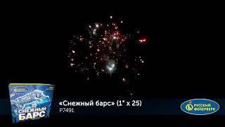 Р7491 СНЕЖНЫЙ БАРС 1х 25
