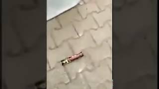 Взрыв петарды под тачкой