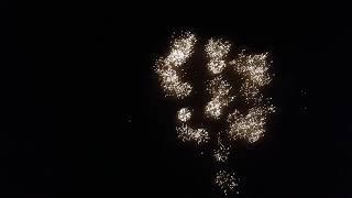 Bubba kush(kush series) 49 shots 500g cake alien fireworks demo