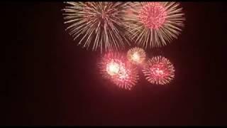 Праздничный салют в честь Дня независимости в Самарканде